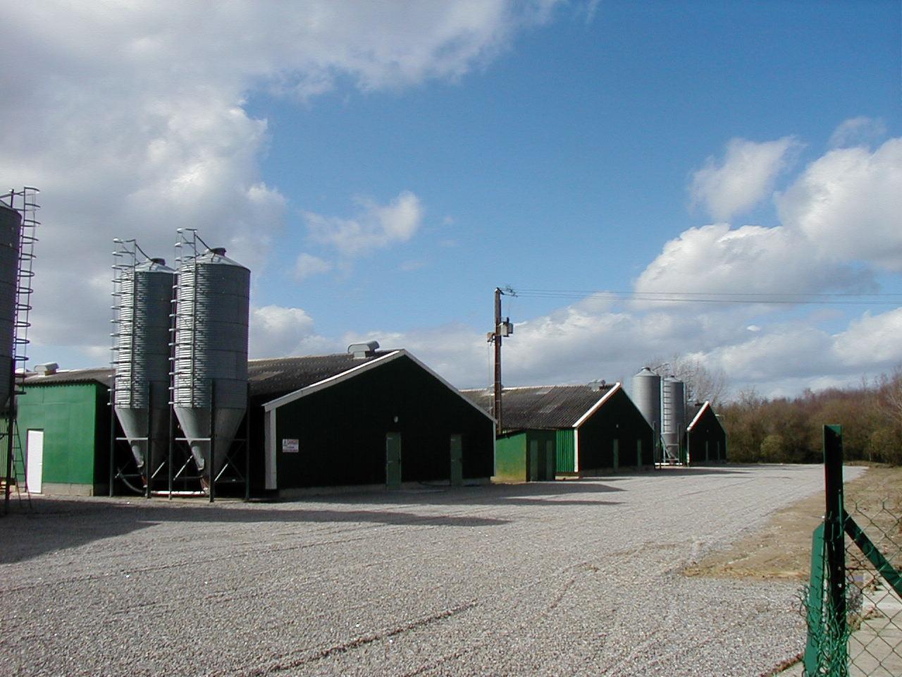 Mesures de l'ammoniac dans l'air : l'agriculture bretonne toujours en cause