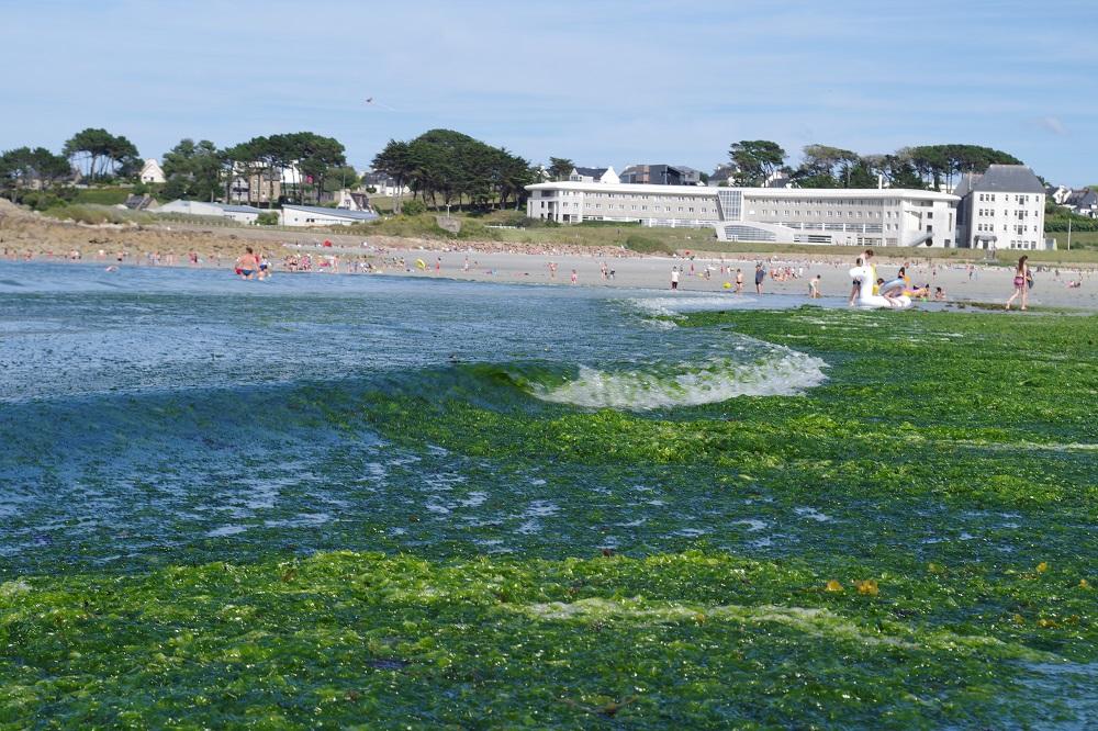 Un nouveau programme contre les Nitrates... qui ignore les algues vertes!? [07/08/2018]