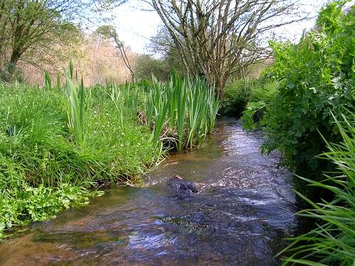 Définir et inventorier les cours d'eau [12/06/15]