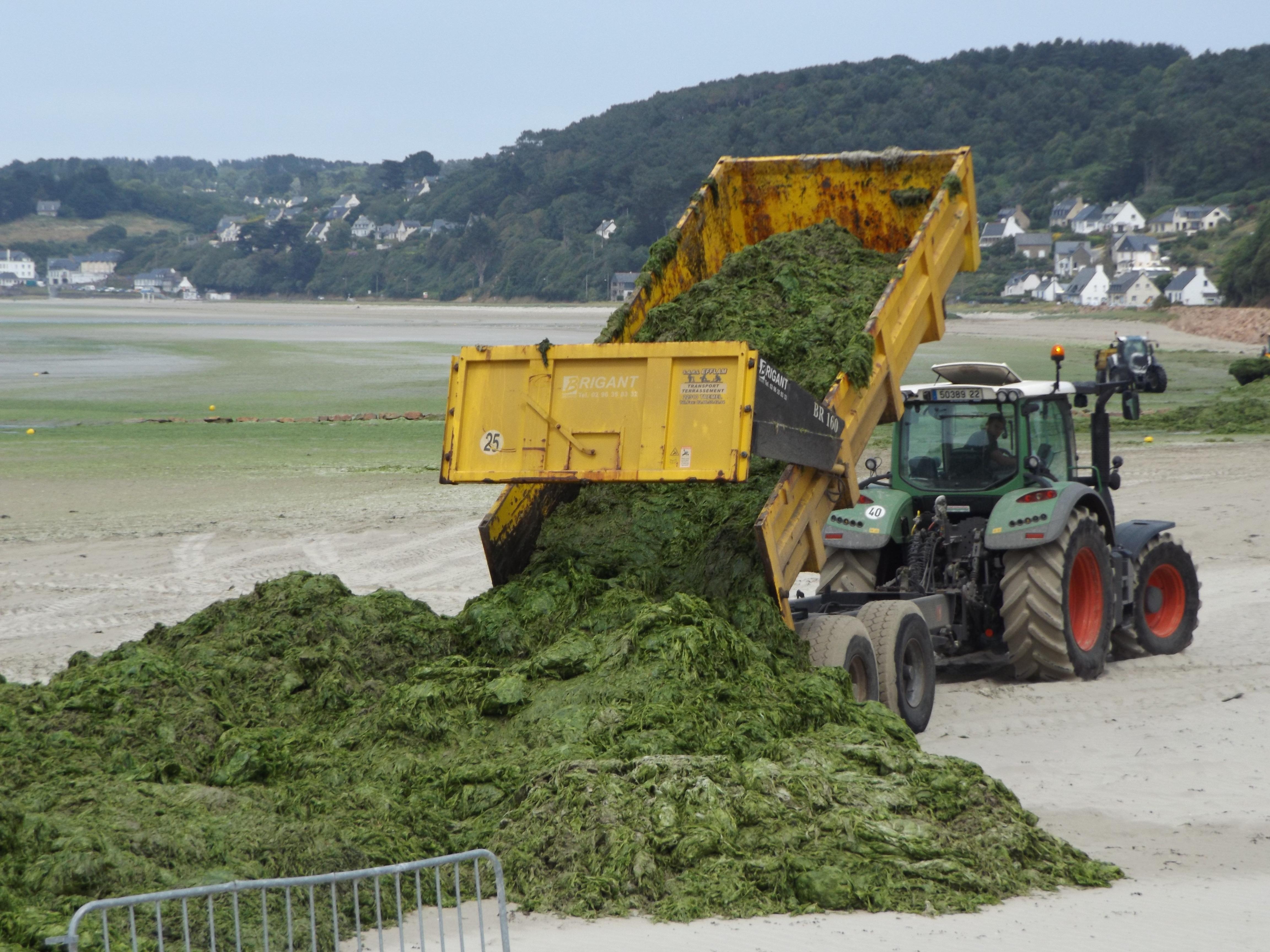 179 kg d'azote épandus sur chaque hectare breton [10/07/15]