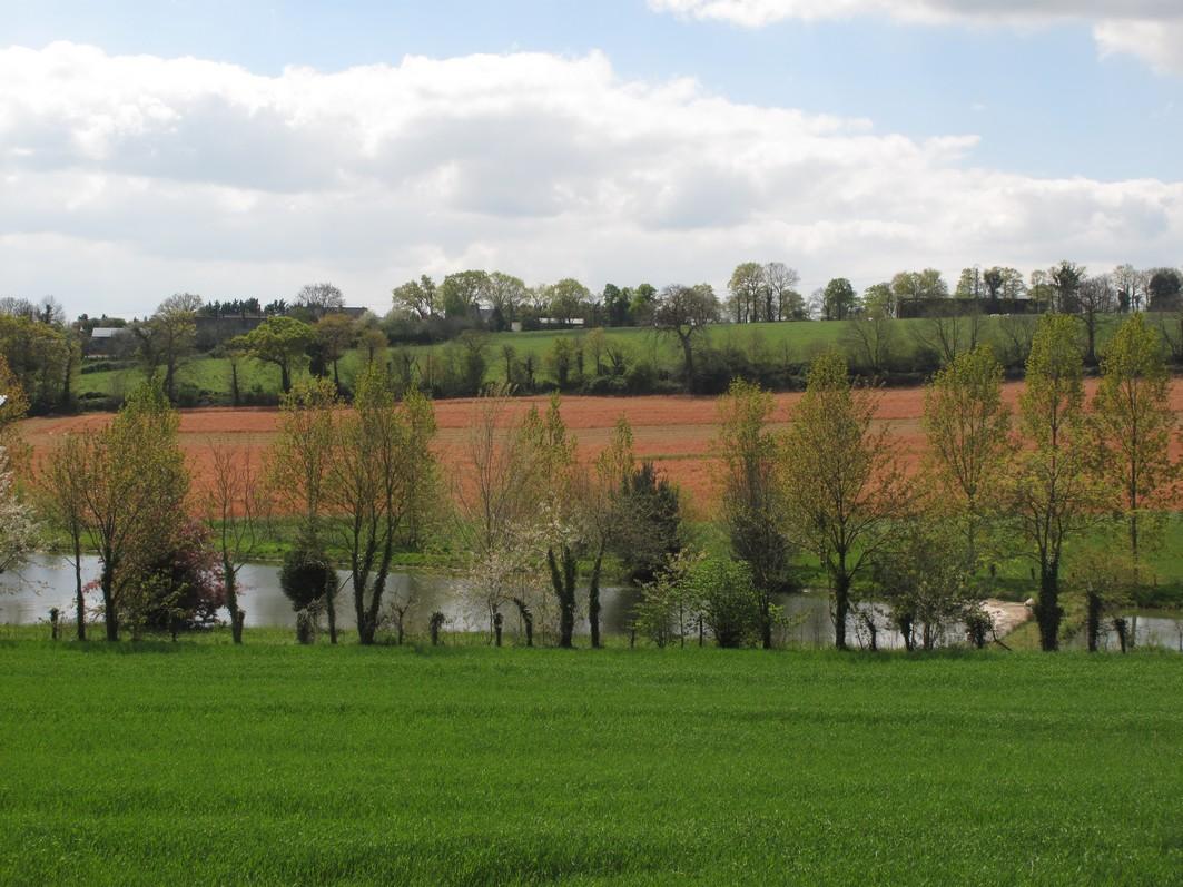 Pesticides | Le préfet de Loire-Atlantique condamné à mieux protéger l'eau