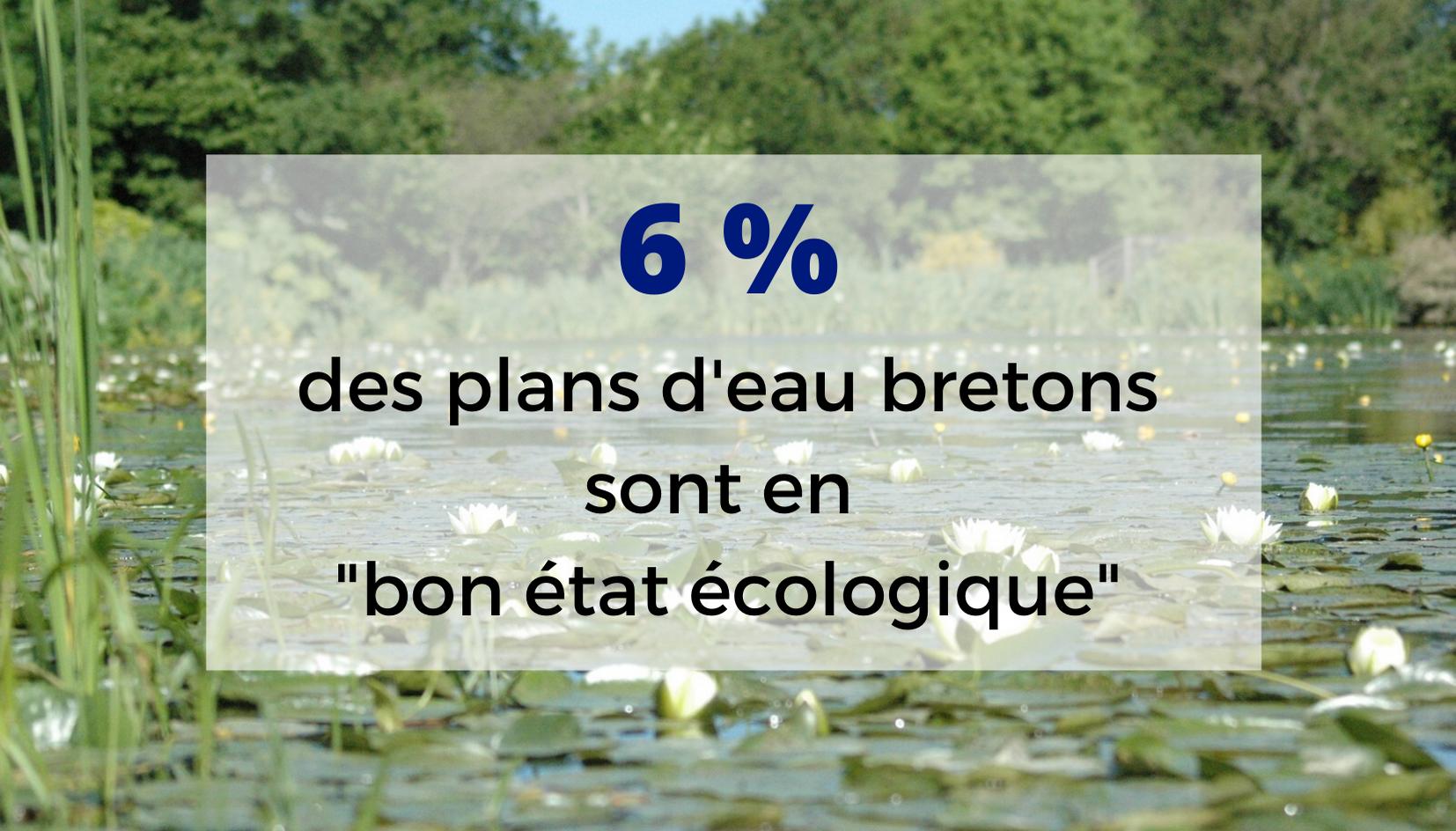 L'état des rivières bretonnes n'est pas satisfaisant