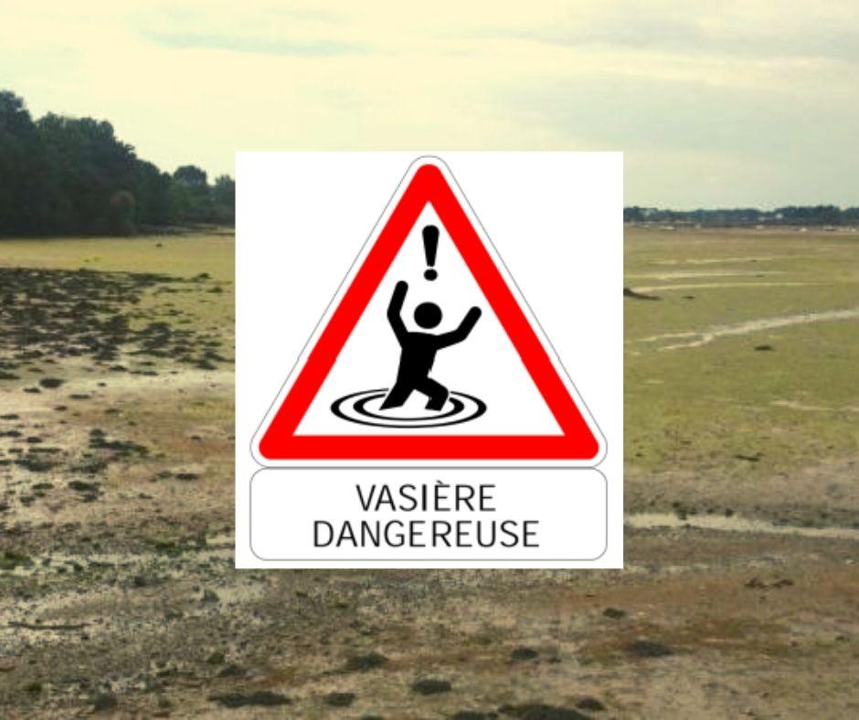 Algues vertes | Les maires du Morbihan pressés d'agir