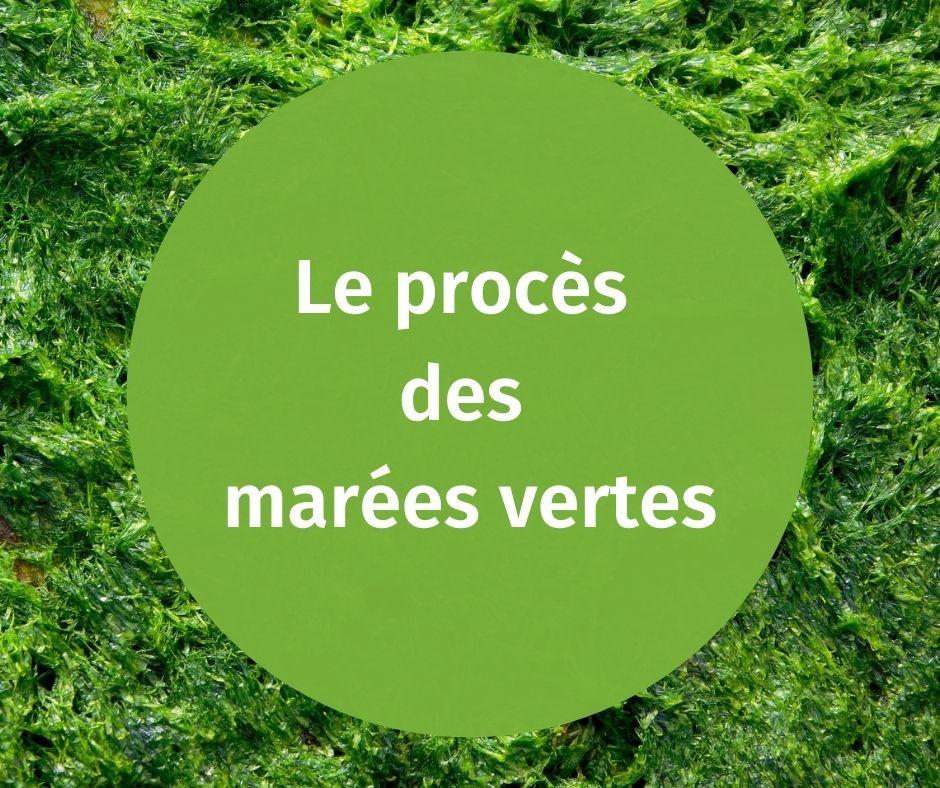 Le programme contre les nitrates ne peut plus ignorer les algues vertes