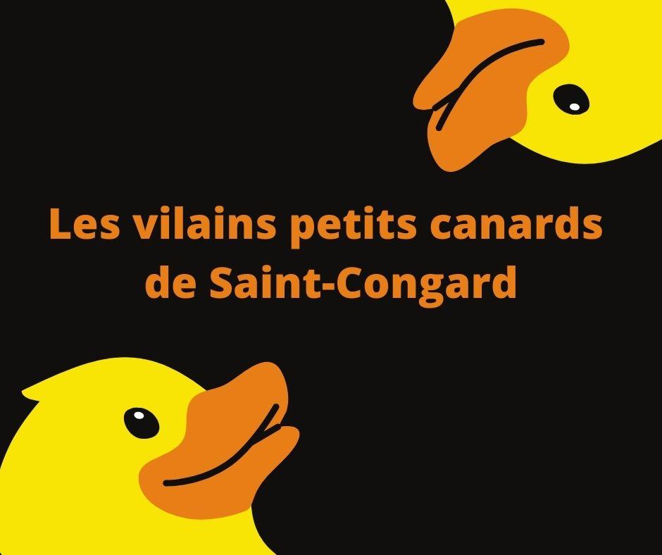 A Saint-Congard, on pratique le saucissonnage des procédures!