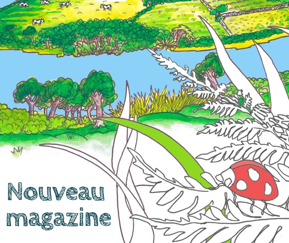Magazine | Libérons nos rivières