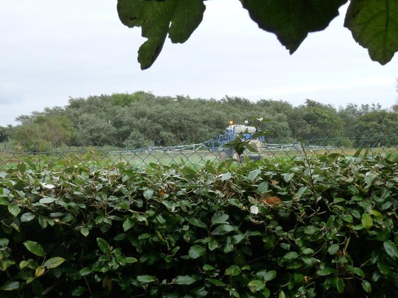 Pesticides: le maire de Langouët victime du ministère de l'Agriculture