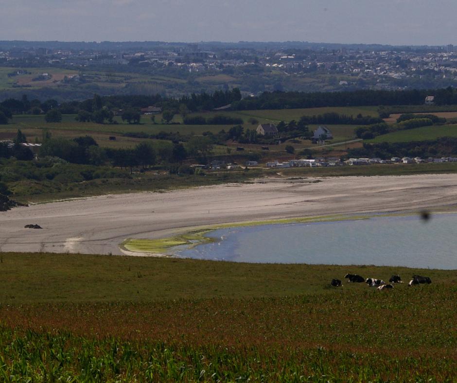 Baie de Saint-Brieuc | Le plaidoyer des associations
