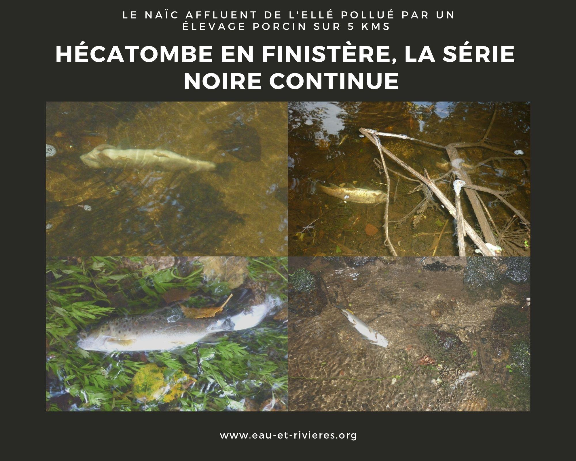 Pollution du Naïc, les rivières ne disent pas merci
