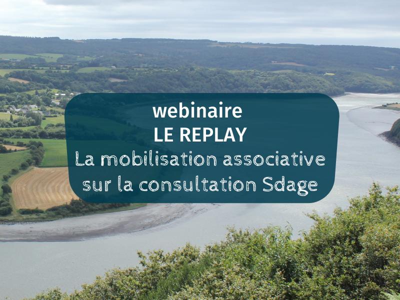 Vidéo  |  Revivez notre webinaire sur la consultation Sdage