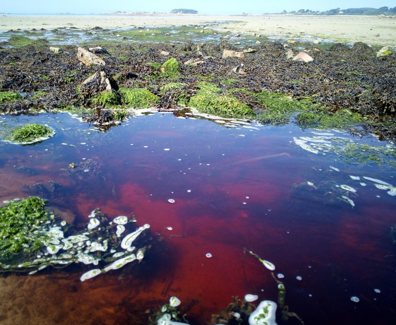 Le premier procès d'un serriste pour pollution de l'eau