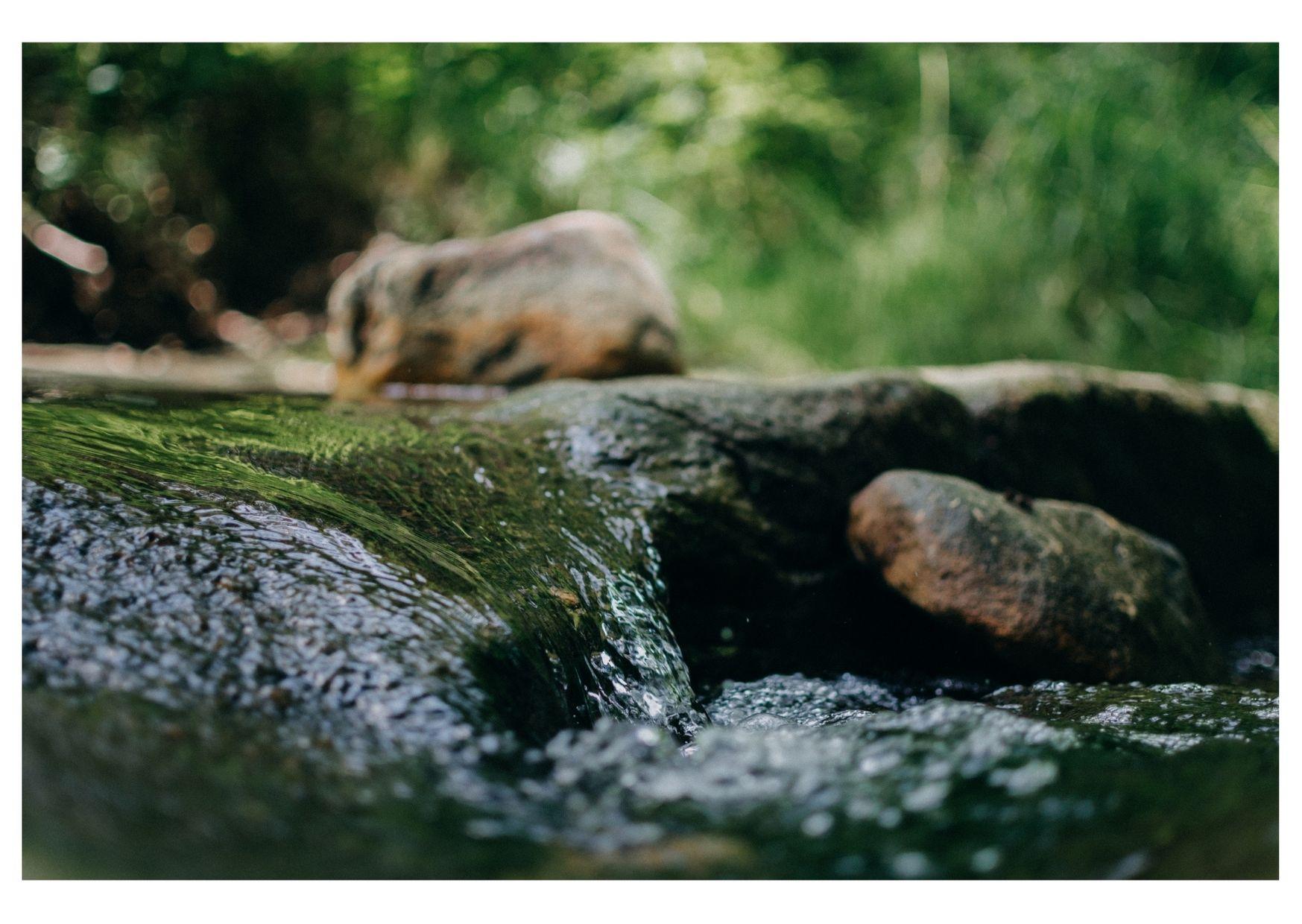 Loi climat: aidons les propriétaires de moulins à rétablir la continuité de nos rivières!