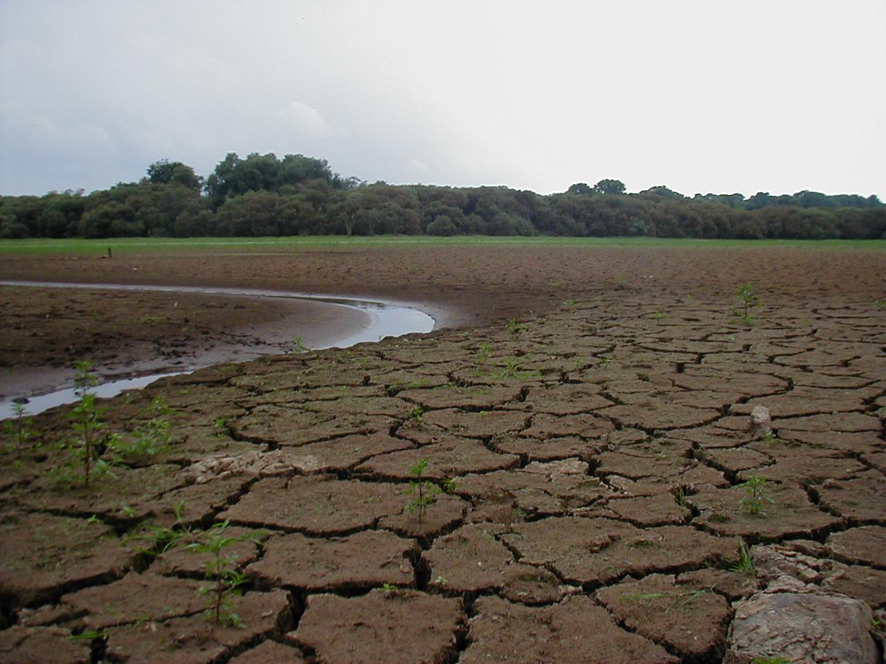 Raréfaction de l'eau : le syndicat de l'Horn invité à mieux accompagner les agriculteurs