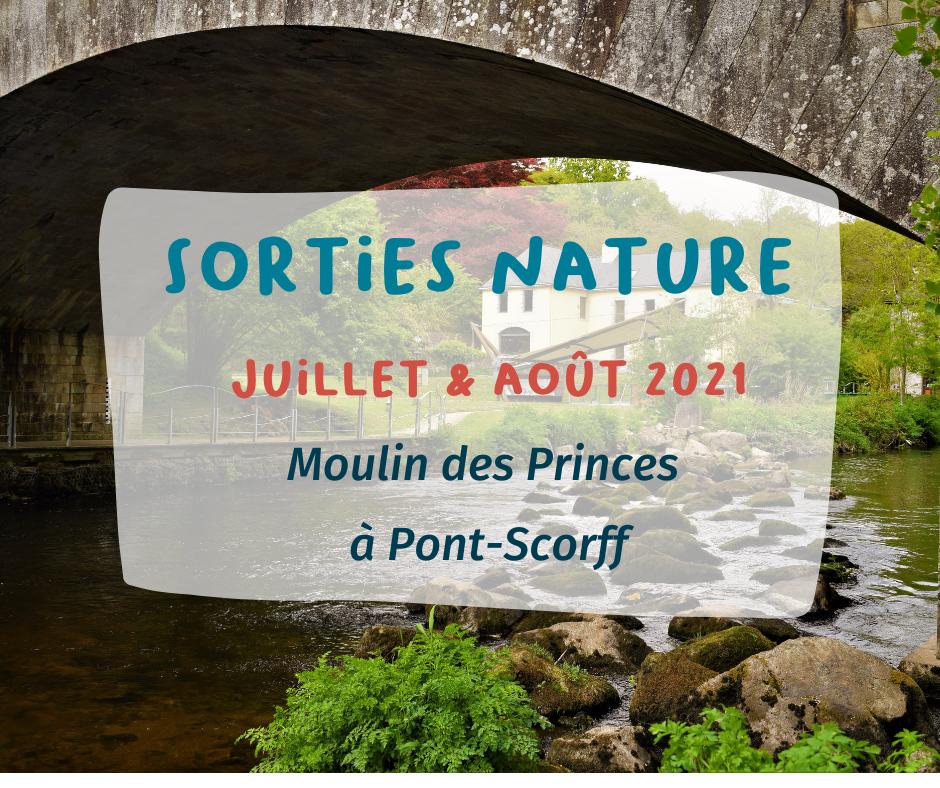 Un été à Pont-Scorff (56) : les sorties nature