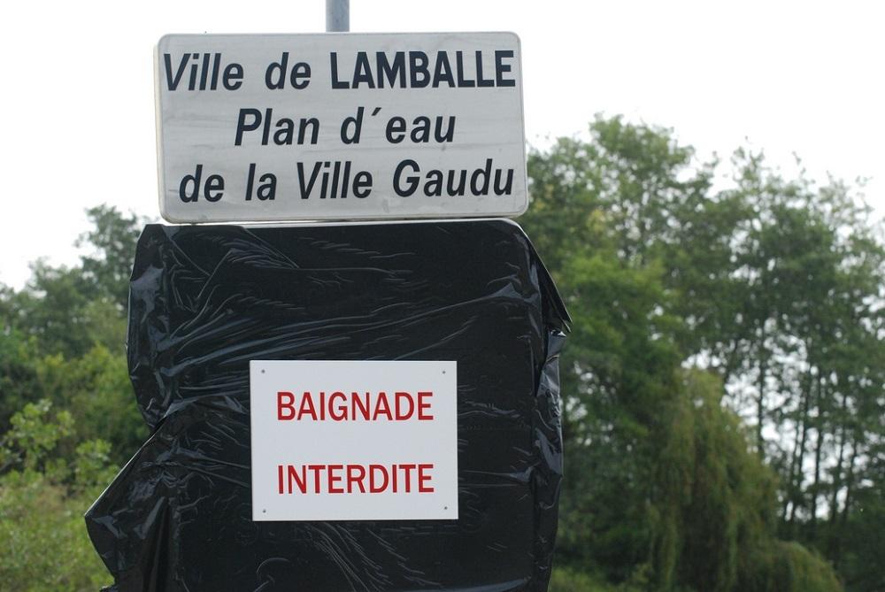 Les plans d'eau bretons contaminés