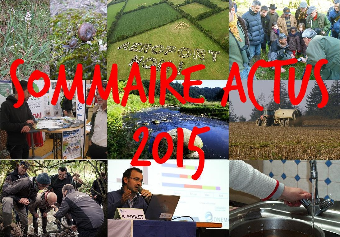 Sommaire actus 2015
