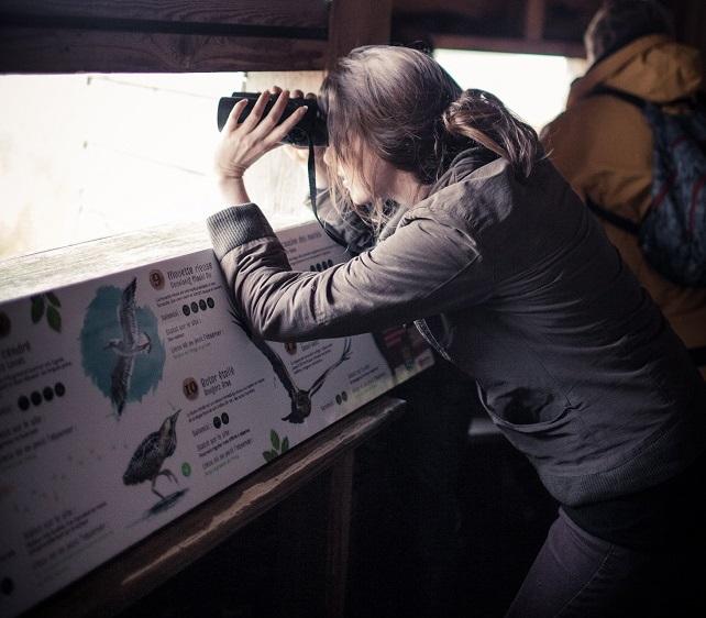 Programme des sorties nature 2018 dans le Trégor [05/06/2018]