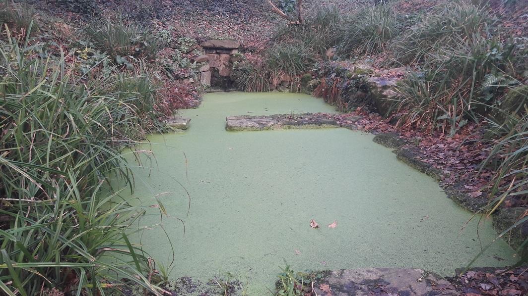 Semaine des fontaines et lavoirs Finistère Nord