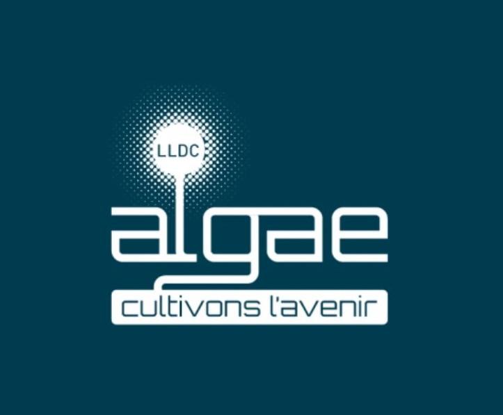 Atteintes à l'environnement | LDC Algae ne dit pas tout