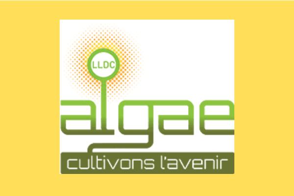 LDC Algae enfin condamnée pour destruction de zone humide