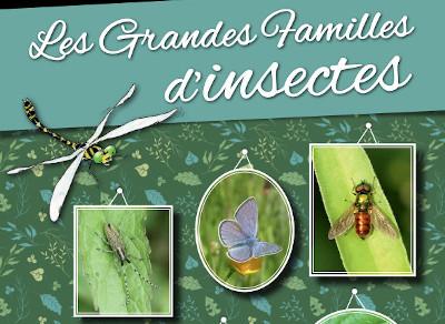 Livret pédagogique | A la découverte des insectes