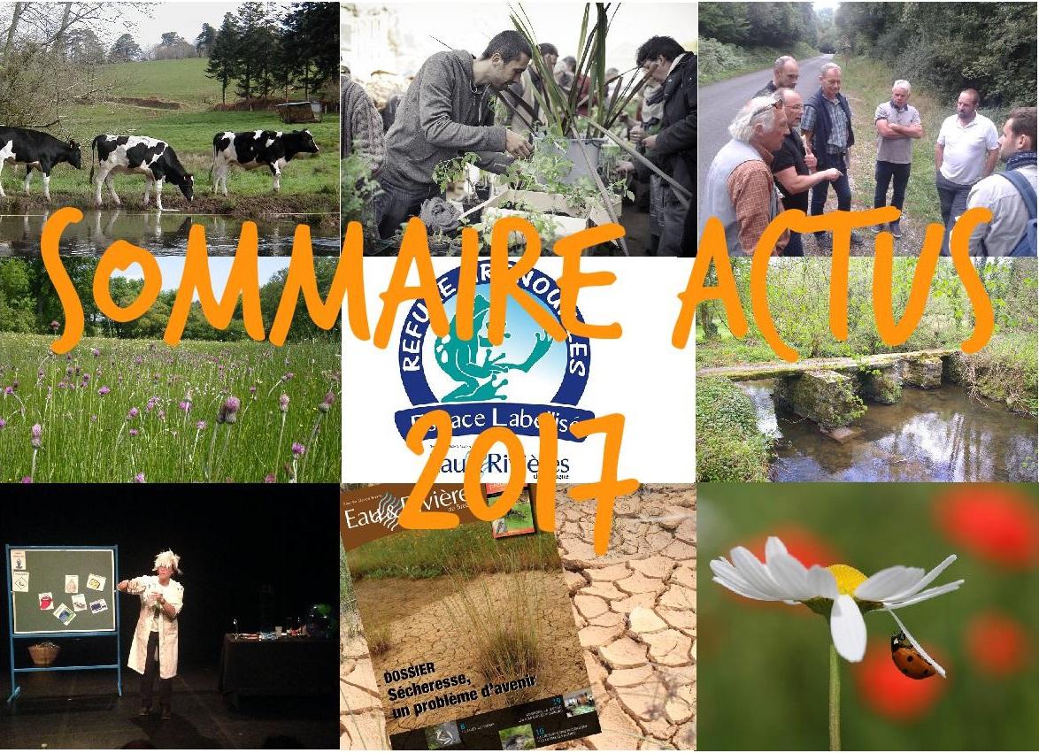 sommaire actus 2017