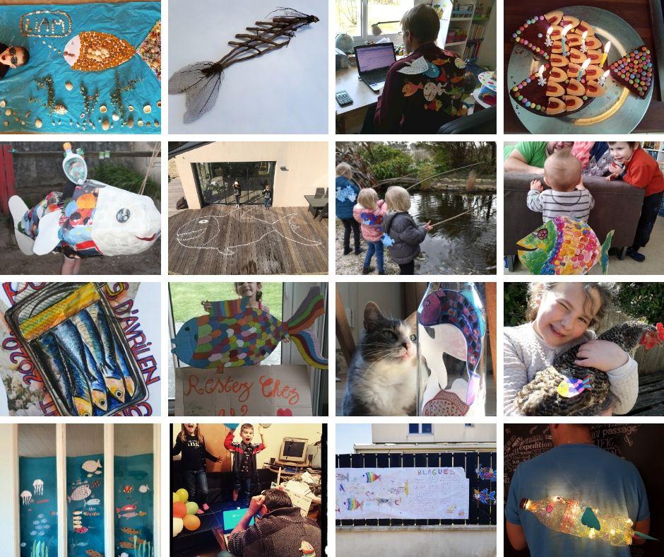 Vidéo | Les gagnants du concours de poissons d'avril