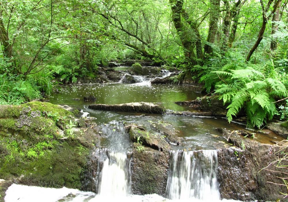 Qualité des eaux en Bretagne