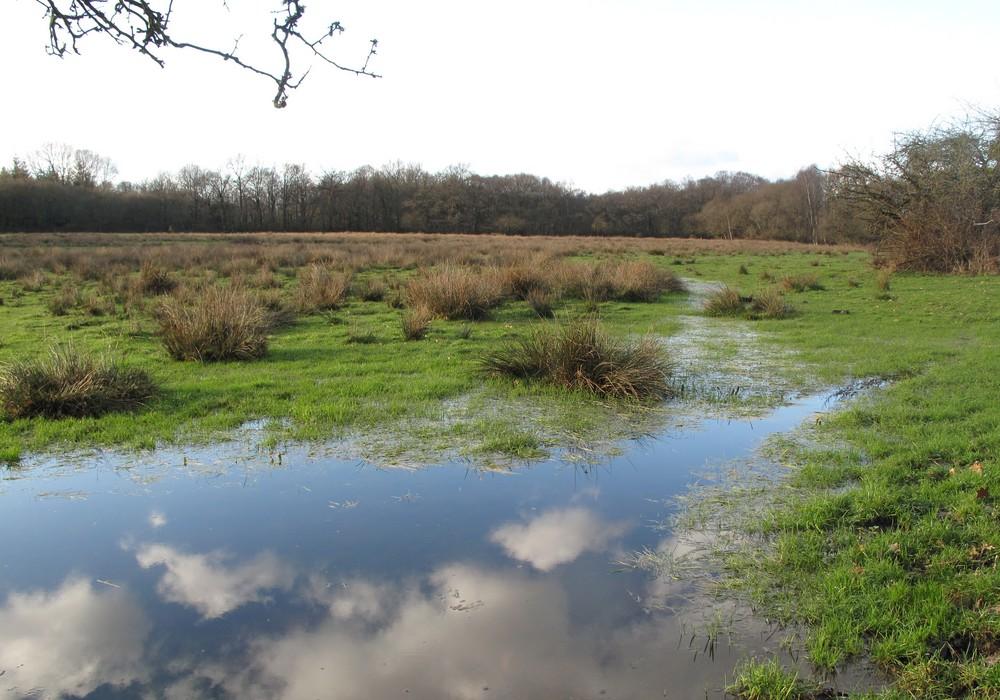 Les SAGE : une planification locale concertée de l'eau