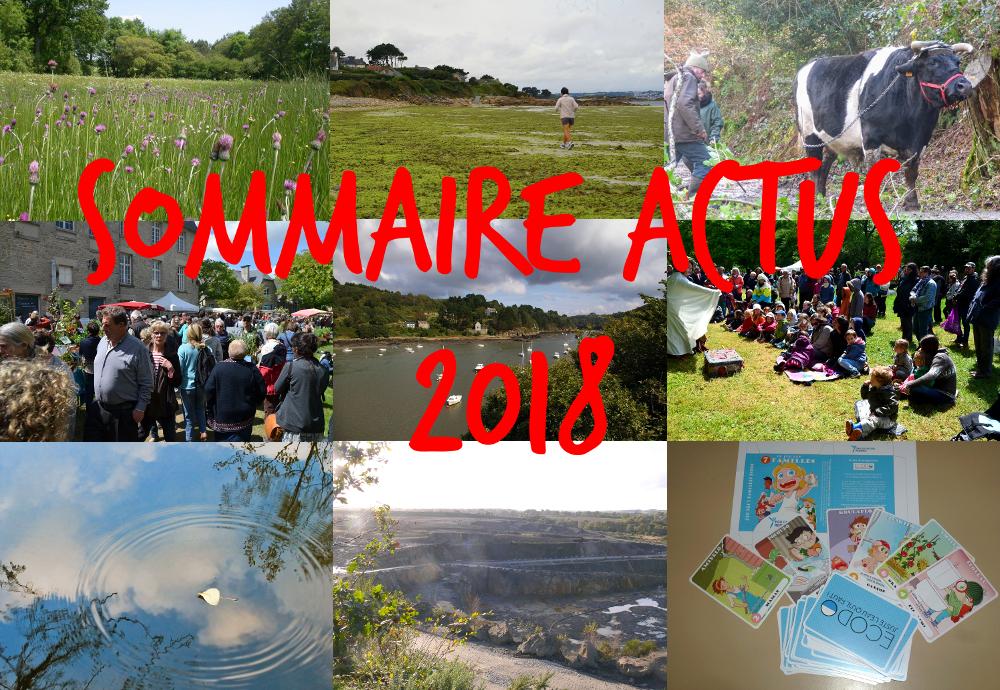 Sommaire actus 2018